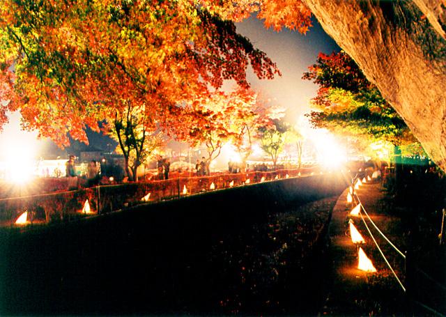 富士河口湖紅葉祭り(河口湖半)