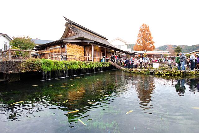 忍野村にある湧泉群 忍野八海(おしのはっかい)